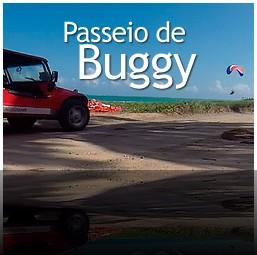 Passeio de Buggy em Porto de Galinhas